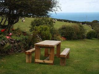 Big Pol Character Cottage Boscastle With Sea Views - Boscastle vacation rentals