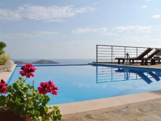 Sunny Plaka Villa rental with Dishwasher - Plaka vacation rentals