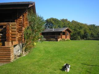 Dartmoor View Lodges - Buttercups - Highampton vacation rentals