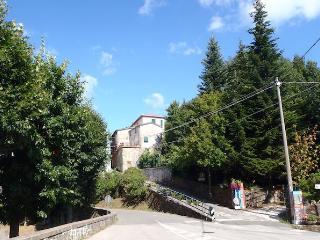 Lovely sunny flat near the Cinque Terre, Italy - Carro vacation rentals