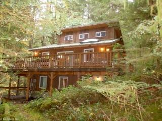 06SL Mountain View Cabin with a Hot Tub and WiFi - Lakewood  Snohomish County vacation rentals