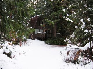 08GS Pet Friendly Cabin with a Sauna and WiFi - Glacier vacation rentals