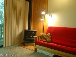 56SLL Budget Priced Condo near Mt. Baker - Glacier vacation rentals