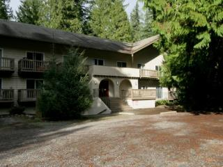 77SLL Budget Priced Condo near Mt. Baker - Glacier vacation rentals
