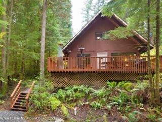 98SL Cozy Pet Friendly Cabin with a Hot Tub and WiFi - Glacier vacation rentals
