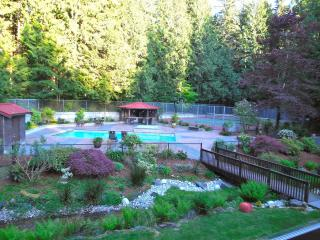 5 bedroom Manor house with Deck in Issaquah - Issaquah vacation rentals