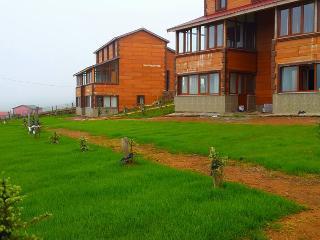 Nice 1 bedroom Resort in Ordu - Ordu vacation rentals