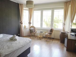 1 bedroom Private room with Internet Access in Gdynia - Gdynia vacation rentals