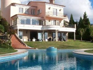 4 bedroom Villa with Internet Access in Vale de Cambra - Vale de Cambra vacation rentals