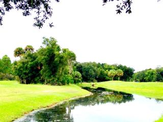 Kate's Places/ Jasmine - Golfer's Dream Near Beach - New Smyrna Beach vacation rentals