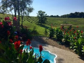 Hocking Hills Luxury Cabins - Pools Open ALL year - Logan vacation rentals