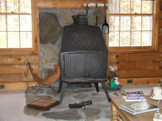 Beautiful Cabin with Internet Access and Parking - Andover vacation rentals