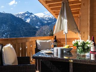 "Panoramapark Soleil ""Alphorn"" - Wengen vacation rentals"