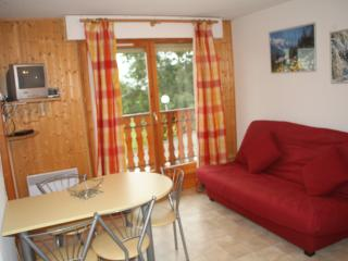 1 bedroom Apartment with Short Breaks Allowed in Thollon-les-Memises - Thollon-les-Memises vacation rentals