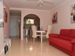Nice Condo with Internet Access and Garage - Palm-Mar vacation rentals