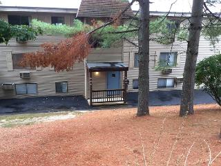 Village at Winnipesaukee Condo (MCC935Bf) - Laconia vacation rentals