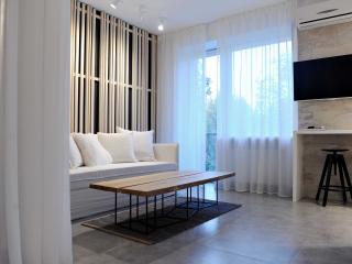 NEW designer apartment at Pechersk - Kiev vacation rentals