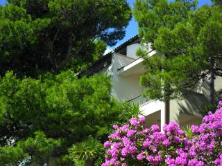 Apartment Stanicic, room 2+1, seaview - Brela vacation rentals