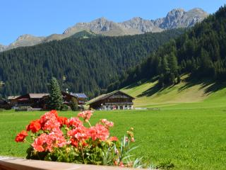 Feldererhof - Appartment Alpenrose - Valle di Casies vacation rentals
