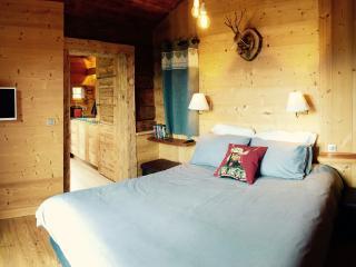 Les Gougnats - Mazot de Charme face au Mont Blanc - Cordon vacation rentals