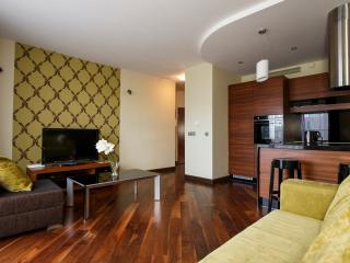 Luxury Apartment Krawiecka 3 Street - Wroclaw vacation rentals