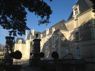 Château de Jalesnes 'Ackerman' - Saumur vacation rentals