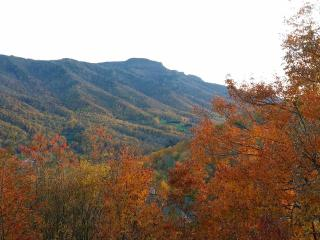 High Country Condo with Spectacular Views - Seven Devils vacation rentals