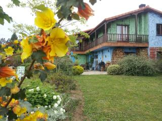 80C. The house of Rosa Jove - A Coruna Province vacation rentals
