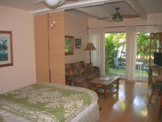 Clean, Quiet, Comfortable - At a Great Price !!! - Kihei vacation rentals