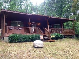 Bear In The Sky - Ellijay vacation rentals