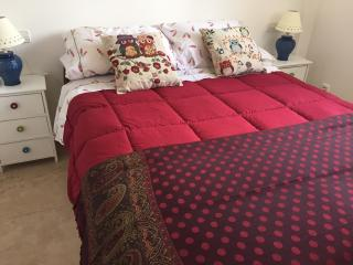 Modern Two bed roomed Apartment - Province of Malaga vacation rentals