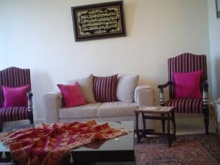 Full Furnished Apt in Beirut, Verdun Best Location - Beirut vacation rentals