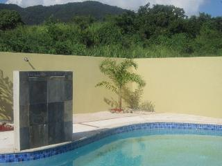 Casa Tropical - Patillas vacation rentals