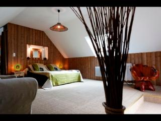 Chambres d'hôtes A l'orée du bois boisée avec SPA - Pommerit-le-Vicomte vacation rentals