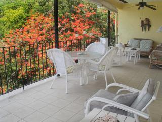 Lovely Condo with Deck and Garden - Cruz Bay vacation rentals