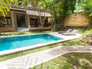 River Villa - Ubud vacation rentals