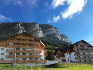Brand new duplex apartment on the slopes - Thollon-les-Memises vacation rentals