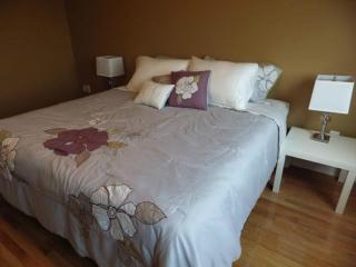 Beautiful Home in Brampton,Hwy 50 & Hwy 7 - Brampton vacation rentals