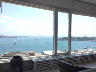 Beautiful Condo with Internet Access and A/C - Istanbul vacation rentals