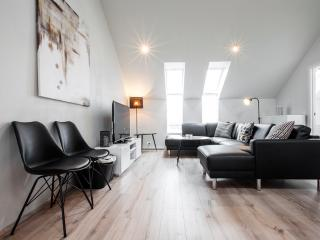 Extremely Well Situated In Downtown Reykjavik - Reykjavik vacation rentals