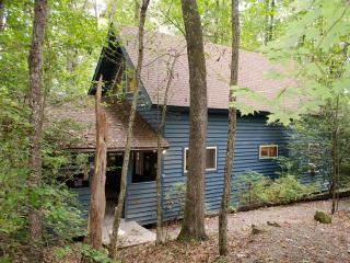 Wood's Ferry at Adventures on the Gorge - Lansing vacation rentals