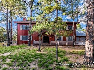 Perfect House with Internet Access and Mountain Views - Ruidoso vacation rentals