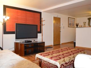 Snug Chicago Condo (2Br-1Ba) - Chicago vacation rentals