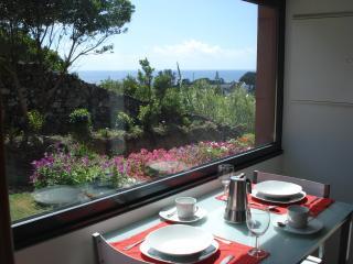 Beautiful 2 bedroom House in Agua de Pau - Agua de Pau vacation rentals