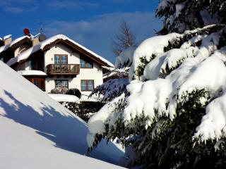 Mountains, a lake, ski, swim, hike, bike & relax! - Achenkirch vacation rentals