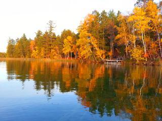Lakefront House on Beautiful Northern Michigan Lak - Atlanta vacation rentals