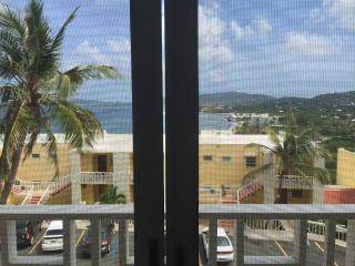 Wonderful Condo with Internet Access and Short Breaks Allowed - Christiansted vacation rentals