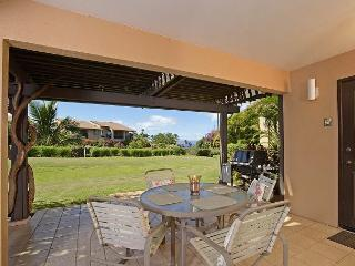 Lovely Condo with Internet Access and A/C - Wailea vacation rentals
