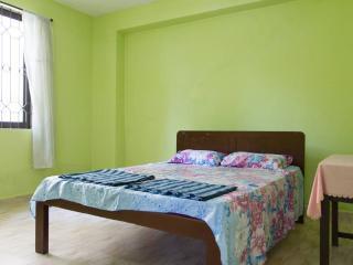 2 bedroom Apartment with Balcony in Saligao - Saligao vacation rentals