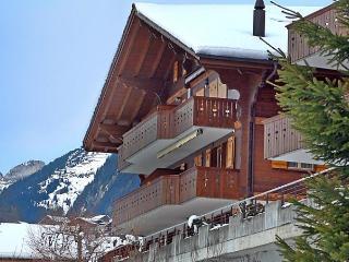 Perle - Grindelwald vacation rentals